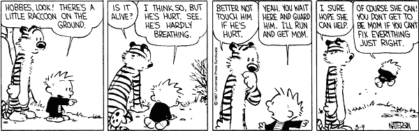 Calvin and hobbes comic strip 1