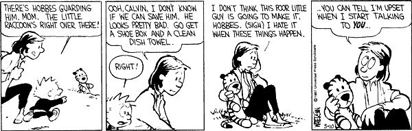 Calvin and hobbes comic strip 2