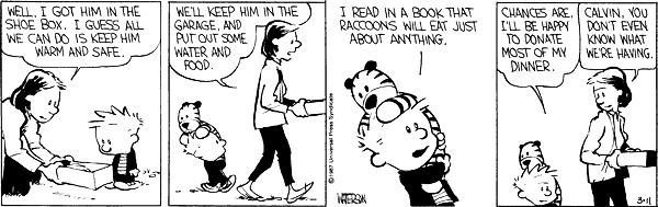 Calvin and hobbes comic strip 3