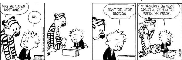 Calvin and hobbes comic strip 4