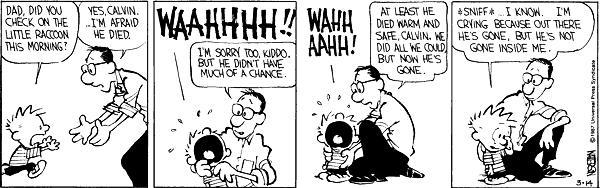 Calvin and hobbes comic strip 6