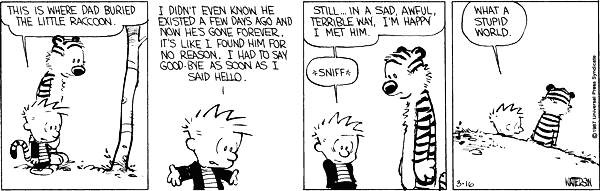 Calvin and hobbes comic strip 7