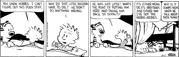 Calvin and hobbes comic strip 8