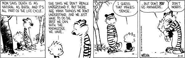 Calvin and hobbes comic strip 9